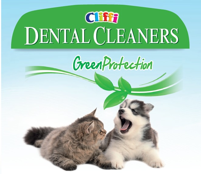 dental-cleaners