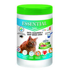 essential-gatto-senior